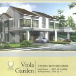 Viola Garden