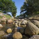 botanica-river
